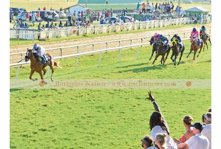 Poetic Licence favourite for Guineas