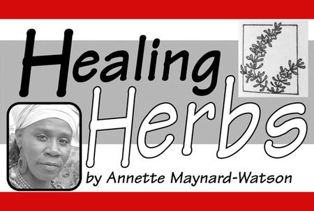 HEALING HERBS: Useful cleansing teas