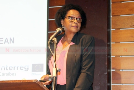 LIAT CEO: Taxes on flights too high
