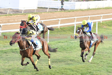 Marie Aurore gallops to victory