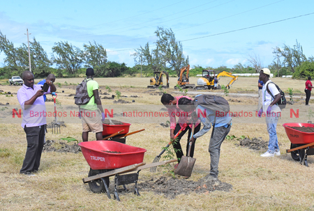 Prescod wants two million trees by yearend