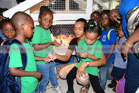 Agrofest a hit with children