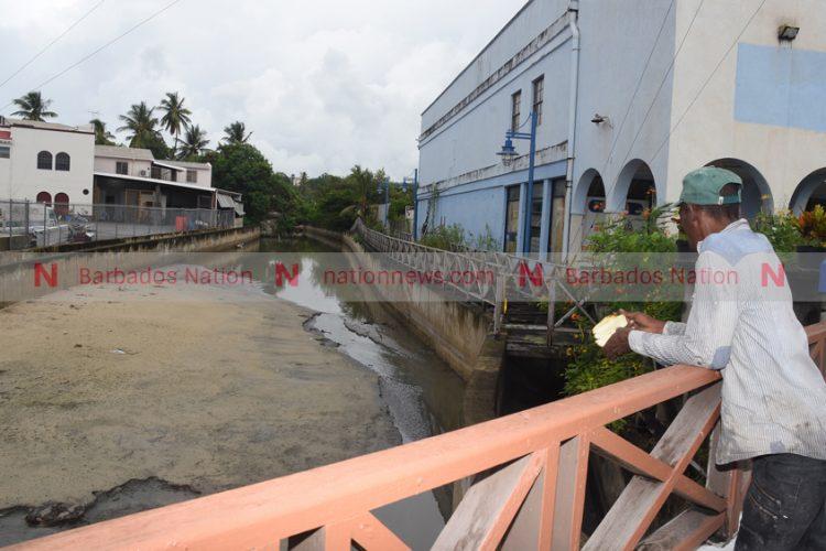 Town Hall Meeting on Salt Pond