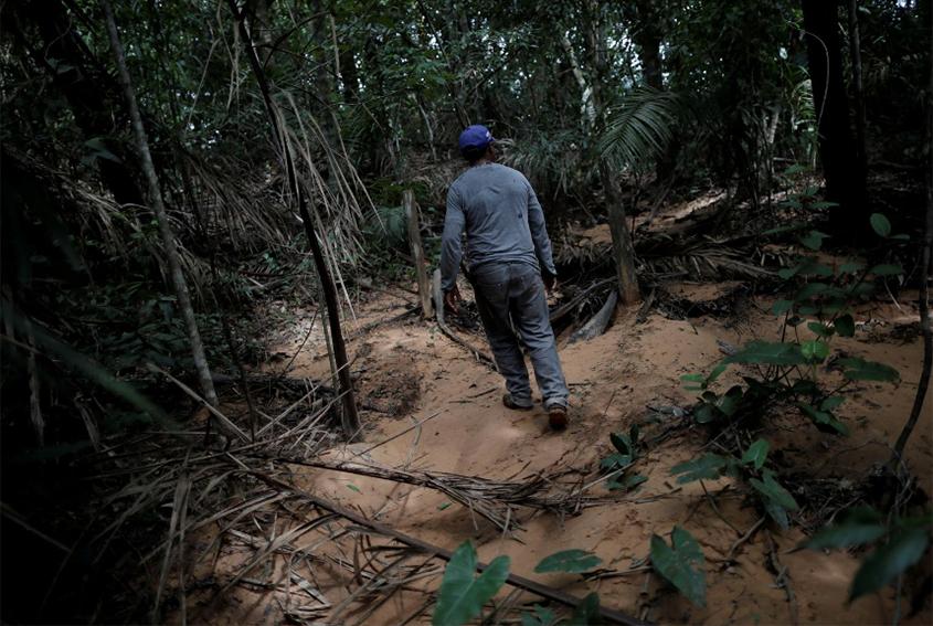 Move to save Brazil savanna