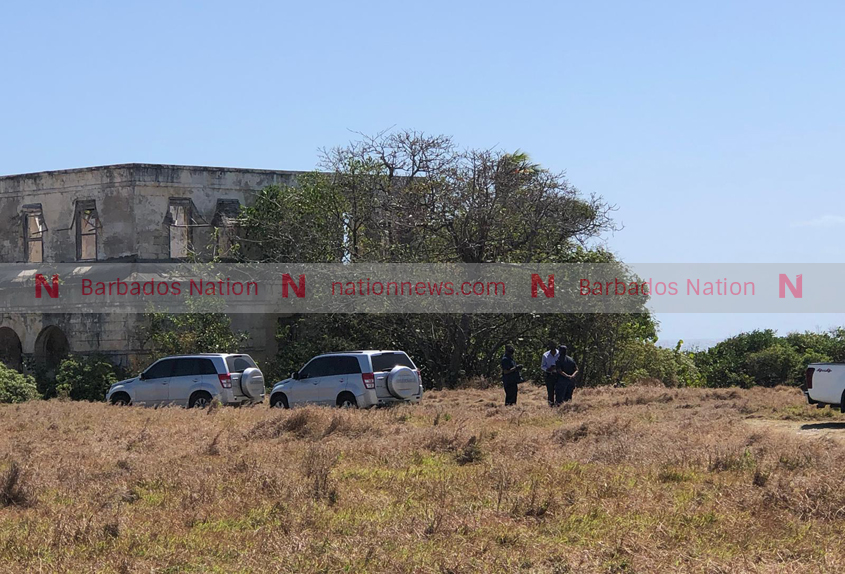 Four arrested after police operation at St Philip beach