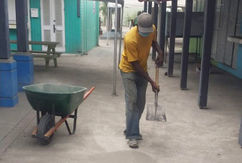 Bay Gardens cleanup