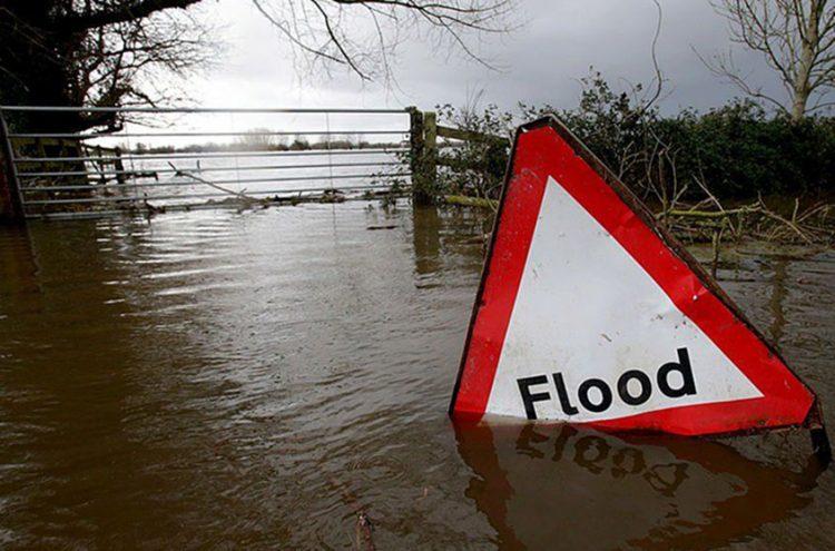 UK government pledges a 'nature-positive future'