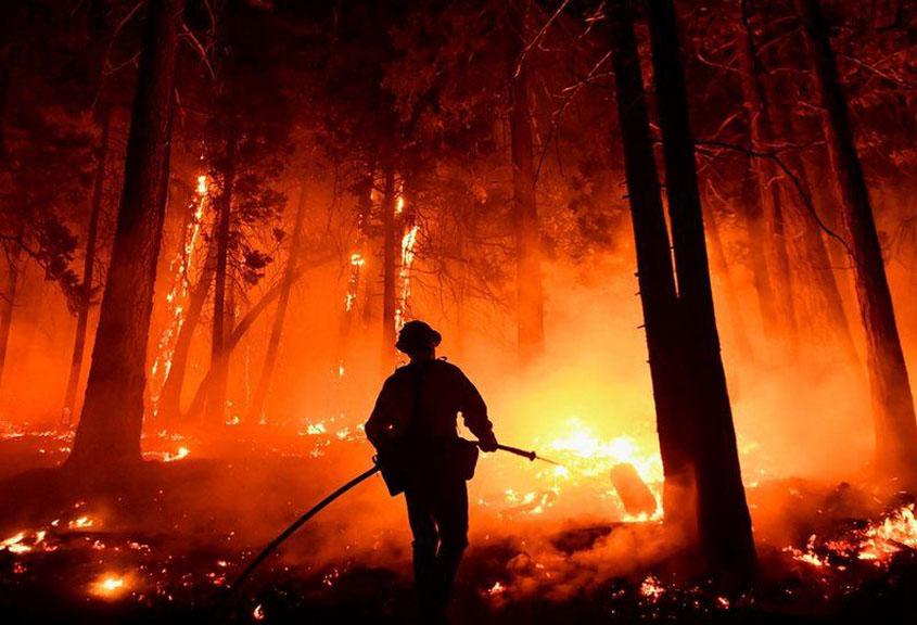 Fires threatening Sequoia Park